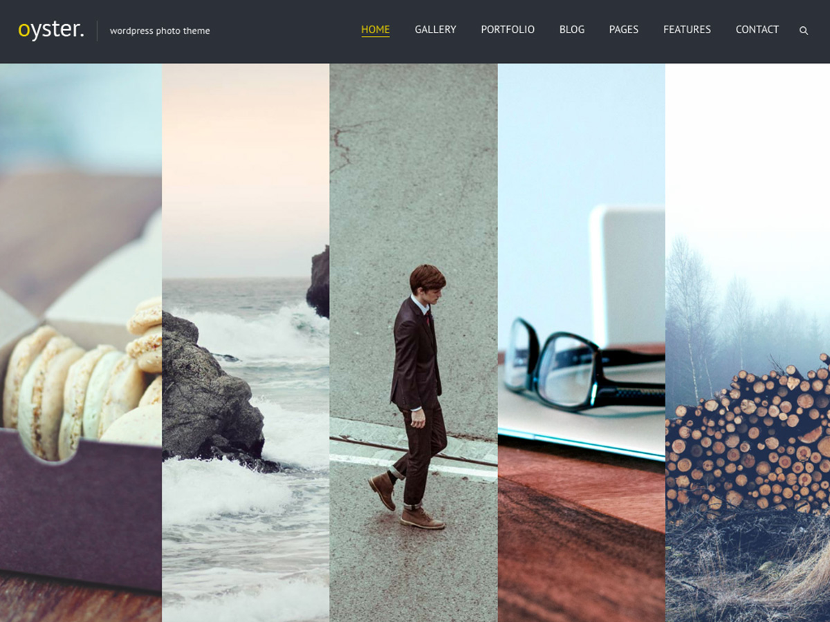 oyster-creative-photo-wordpress-theme-a-story-of-success-review