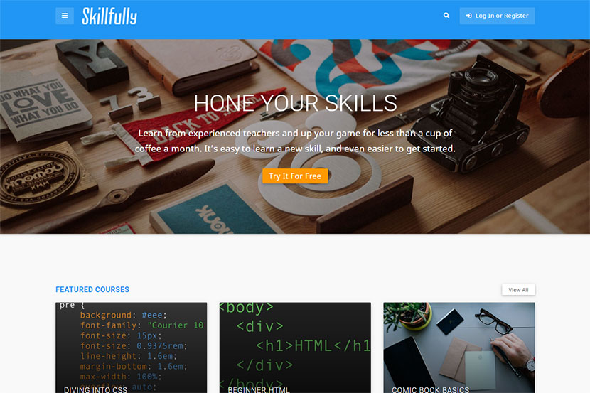 skillfully-a-learning-management-system-theme