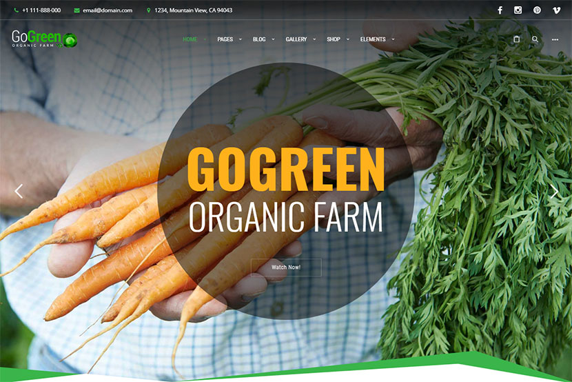 gogreen-organic-food-farm-market-business-wordpress-theme