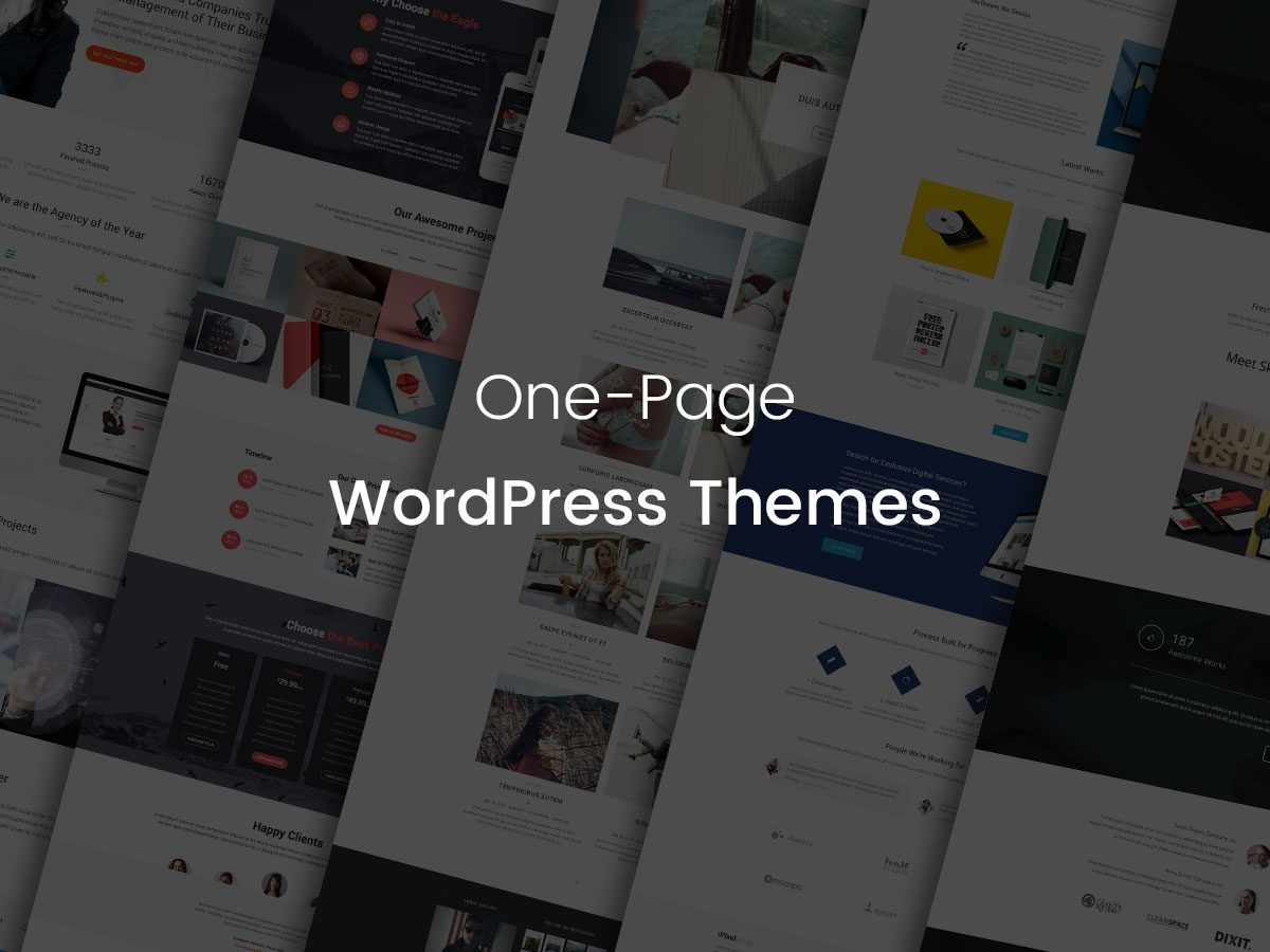 One-Page WordPress Themes - A Creative Collection