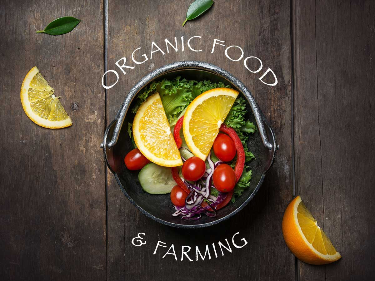 organic-food-and-farming-wordpress-themes-a-stunning-bunch