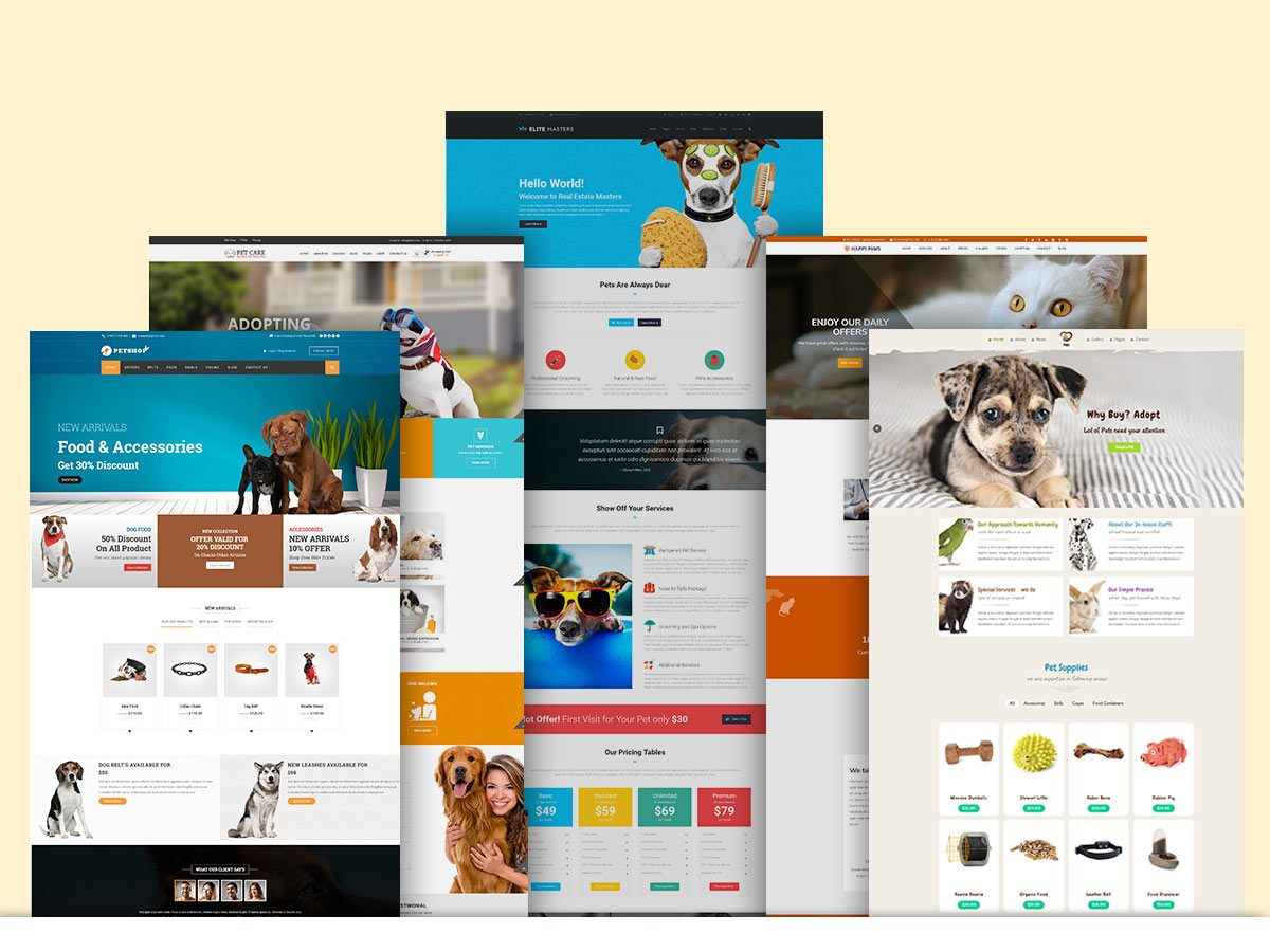 Pet Care WordPress Themes for Winter 2017 - 1