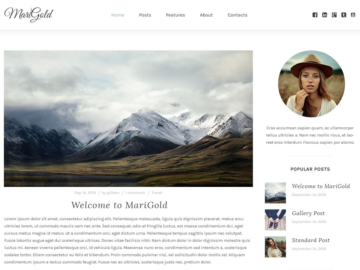marigold-a-responsive-free-wordpress-blog-theme