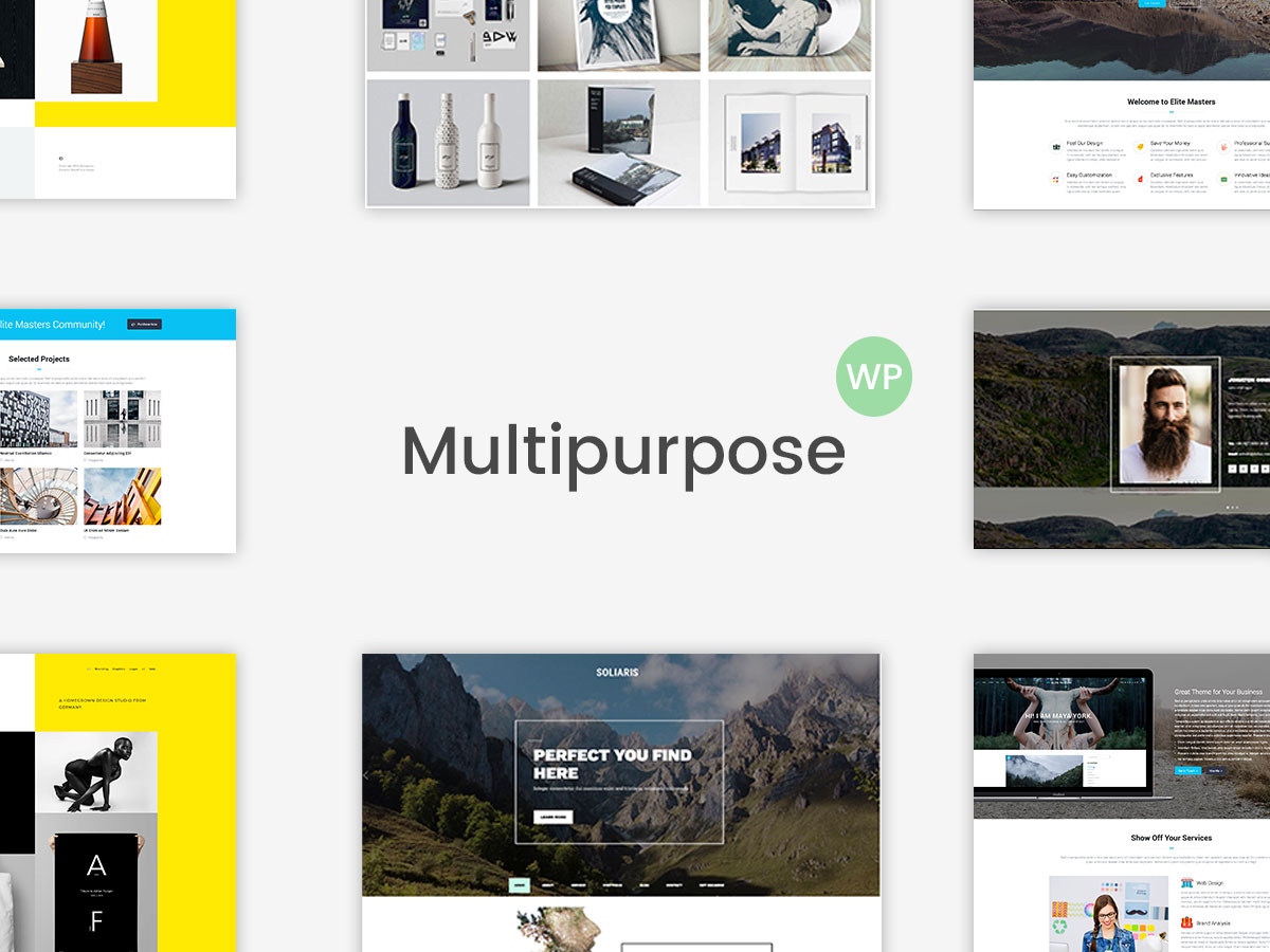 Multi-Concept and Multipurpose WordPress Themes - Top 15