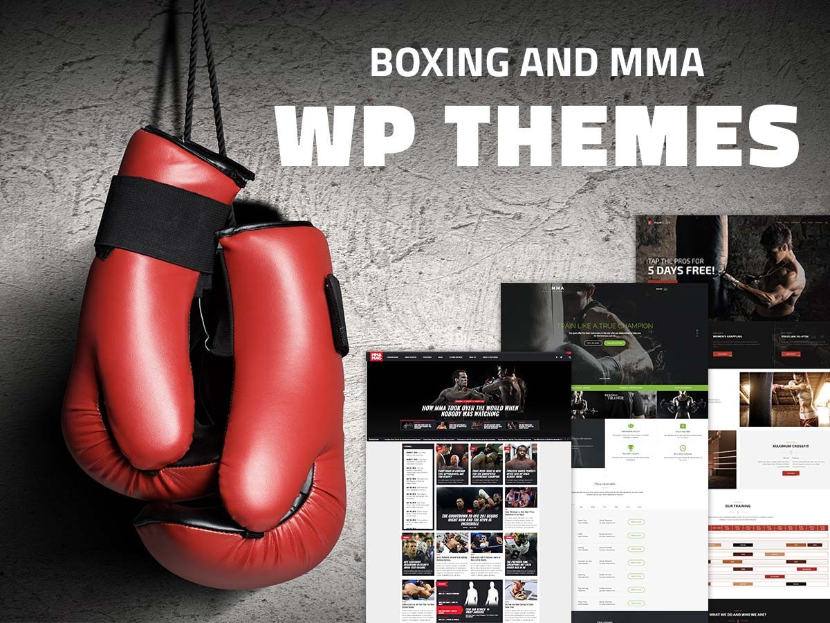 Boxing and MMA WordPress Themes for Martial Arts Addicts 2017