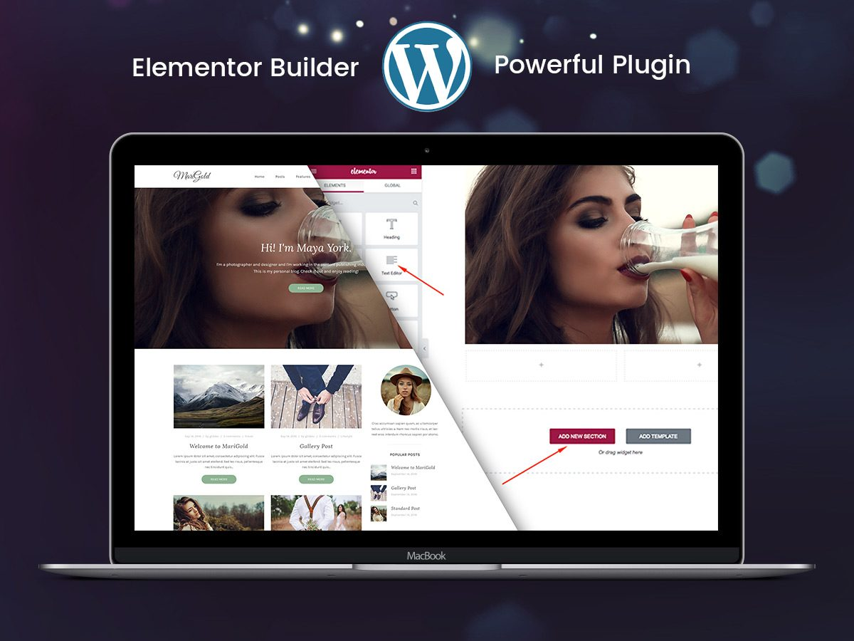 Create Full-Width Layouts with Elementor for WordPress