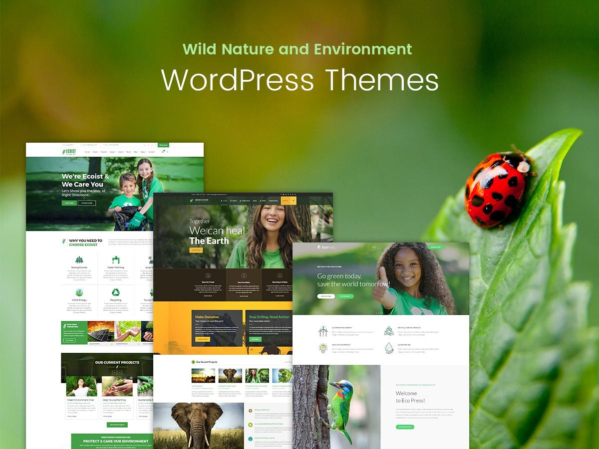 Wild Nature and Environment WordPress Themes for Spring 2017