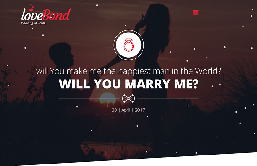 Event Planner and Special Date WordPress Themes - WP Daddy