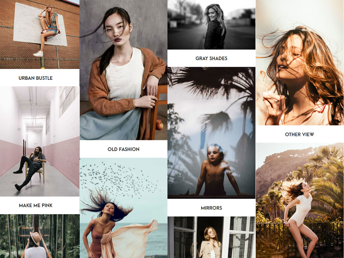 Photography Portfolio WordPress Themes for Creatives of Any Kind