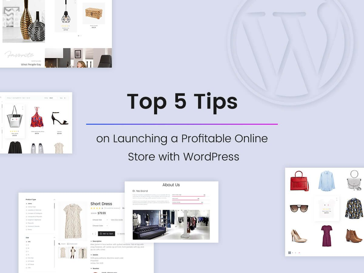 Top 5 Tips on Launching a Profitable Online Store With WordPress + Useful Plugins