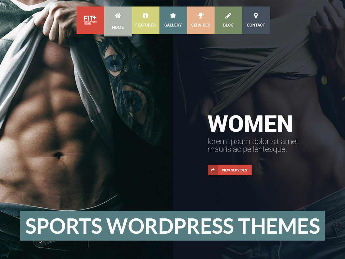 Martial Arts, Sports Clubs and Fitness WordPress Themes - WP Daddy