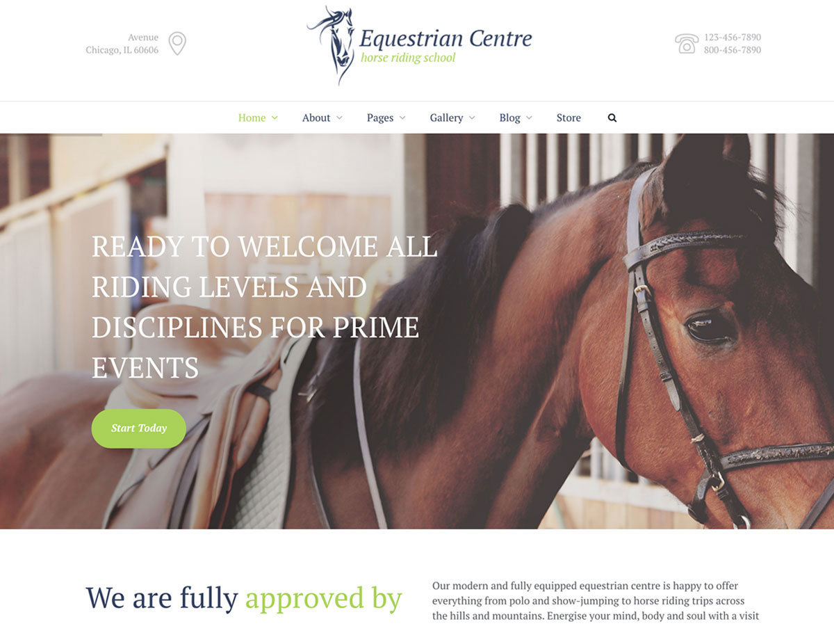 Equestrian-Sports-and-Horse-Riding-WordPress-Themes-For-Professionals-and-Amateurs