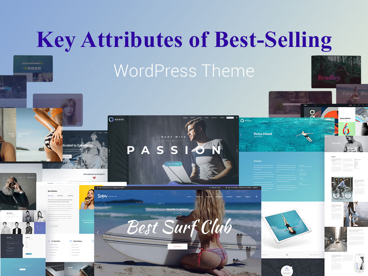 Key Attributes of Best-Selling WordPress Theme + Examples