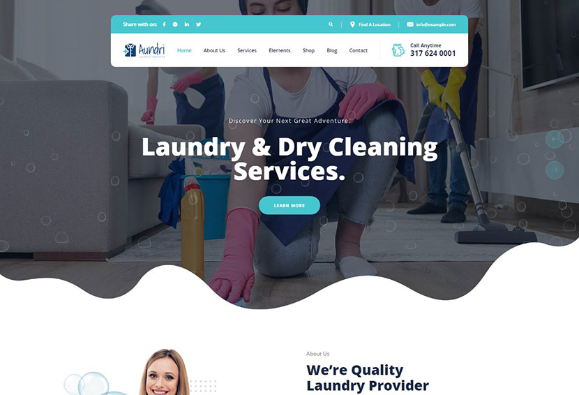 Aundri - Dry Cleaning Services WordPress Theme + RTL