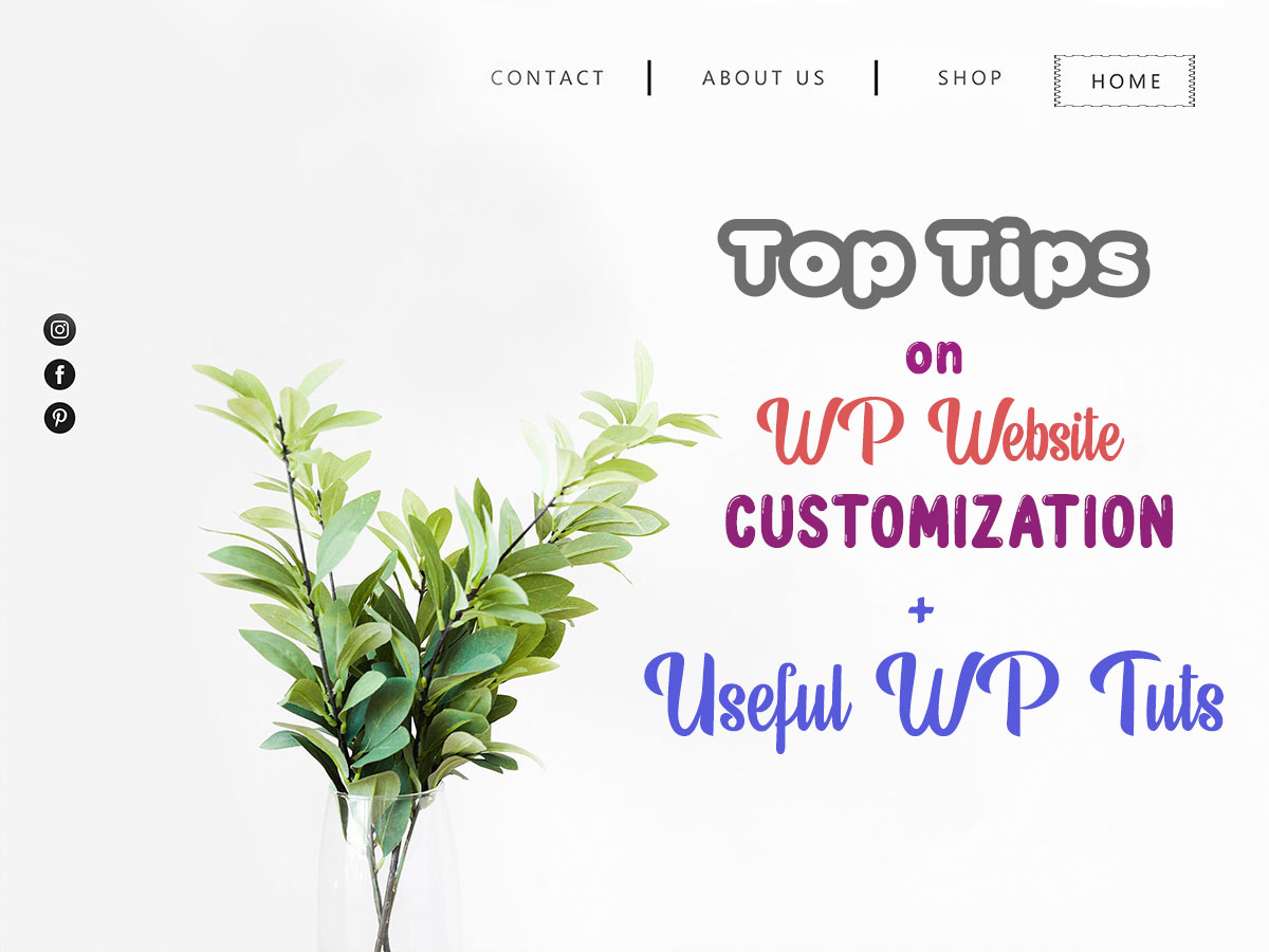 Tips on Customizing a WordPress Website + Helpful WP Daddy's Tuts