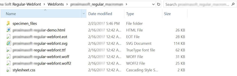 font files local folder wp