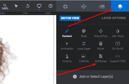 layer options attributes revslider